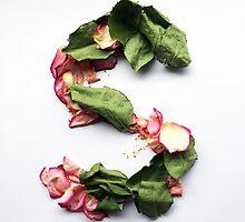 Floral S by hayleylauren