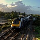 Crossing over at Dawlish Warren  by Rob Hawkins