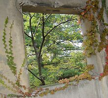 Vine Infused Cornell University Window by Rebecca Mayglothling