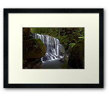 Leura Fun Framed Print