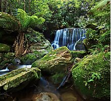 Moss on the Rock - Lurinda Falls  Photographic Print