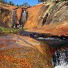 Australian colours by su2anne