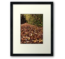 Autumn in Hahndorf Framed Print