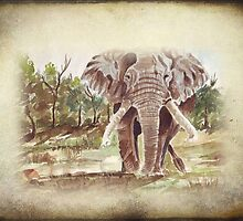 Africa's Giant by Maree  Clarkson