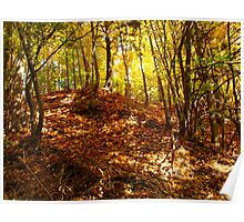 Mounds of leaf fun Poster