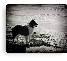 Over the horizon Canvas Print