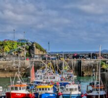 Newquay Harbour Sticker