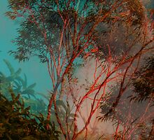 A natural abstraction by Cate Townsend