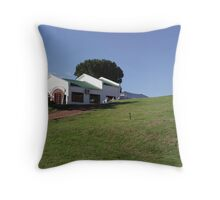 Winery exposed Throw Pillow