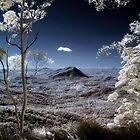 The Valley Below by Kym Howard