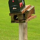 Last Mail Box Standing.................. by Larry Llewellyn