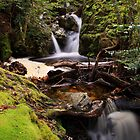 Crater Falls by Claire Walsh