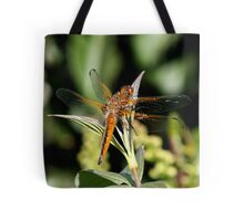 scarce chaser Tote Bag