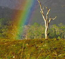 Touching a Rainbow at Ronney Creek by Paul Campbell  Photography