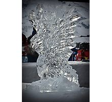 Arosa Ice Eagle Photographic Print