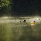 Morning Mist in a Canoe, Karri Valley, Westen Australia by haymelter