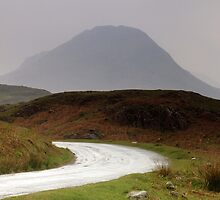Towards Yewbarrow by Paul  Green