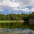Idyllic lake in summer. by cloud7