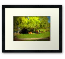 Resting under the Willow - Paris Creek, South Australia Framed Print