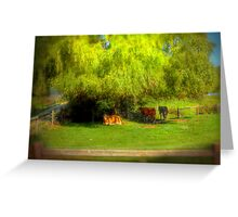 Resting under the Willow - Paris Creek, South Australia Greeting Card