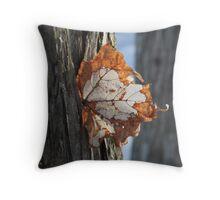 Natural Damage Throw Pillow