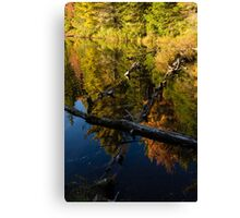 Fall Mirror - Mesmerizing Forest Lake Reflections Canvas Print