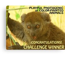 Challenge Entry Canvas Print