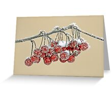Winter Crabapples Greeting Card