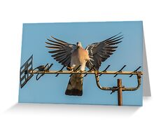 Aerial Encounter 1 - Arrival Greeting Card