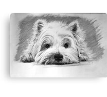 West Highland White Terrier Canvas Print