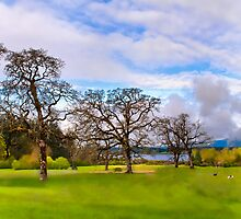 Sir Garry Oak and His Friends - Vancouver Island by Daphne Eze