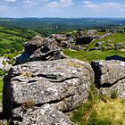 Hound Tor, Dartmoor by Robert Wright