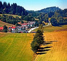 A village, some trees, and more boring scenery by Patrick Jobst