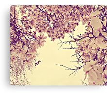 blossoms on top of me Canvas Print