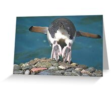 Happy Feet Greeting Card