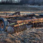 Cultivator by Brad Denoon