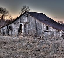 Old Shed by Brad Denoon