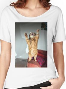 Playful cat Women's Relaxed Fit T-Shirt