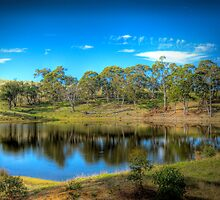 Time for Reflection - Paris Creek, South Australia by Mark Richards