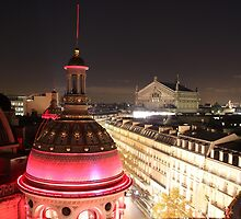 Rooftops of Paris by Elena Skvortsova