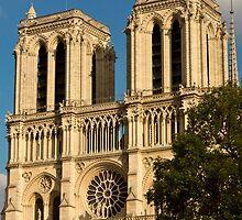 Notre Dame de Paris - 1 ©  by © Hany G. Jadaa © Prince John Photography