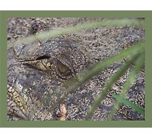 Croc-eye Photographic Print