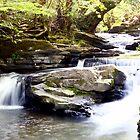A Pontypridd River Scene by maffikus