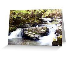 A Pontypridd River Scene Greeting Card