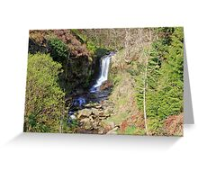 A waterfall in the green surroundings Greeting Card