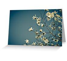 Spring Skies Greeting Card