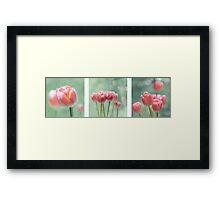 Tulip Collage Framed Print