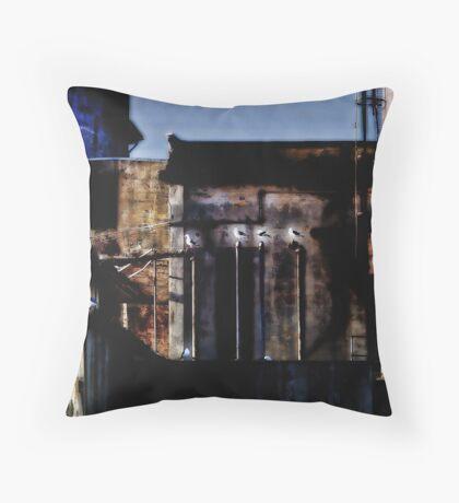 Alcatraz Birds Throw Pillow