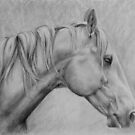 Breeze in graphite by Felicity Deverell