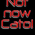 Not now, Cato! Cato Fong, Inspector Clouseau, Film, Burt Kwouk, Chinese manservant, Pink Panther by TOM HILL - Designer